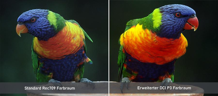 Laser TV Farbraum Vergleich