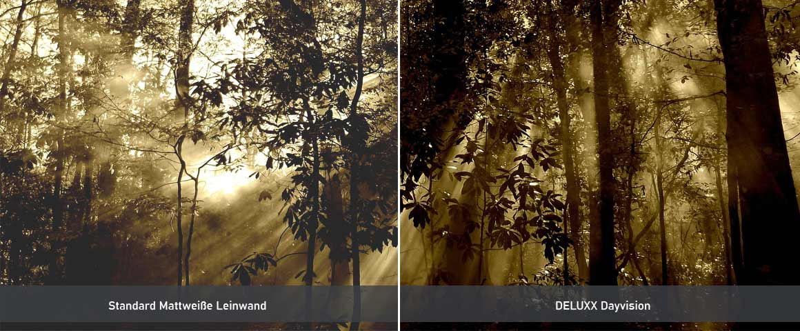 DELUXX Dayvision Vergleich