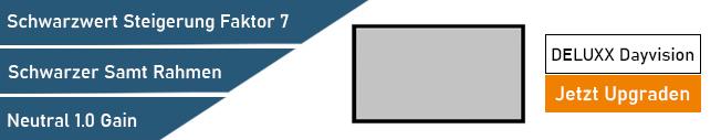 DELUXX Dayvision Rahmenleinwand kaufen