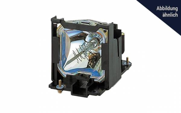 ViewSonic RLC-110 Original Ersatzlampe für PA505W, PX705HD, PX725HD